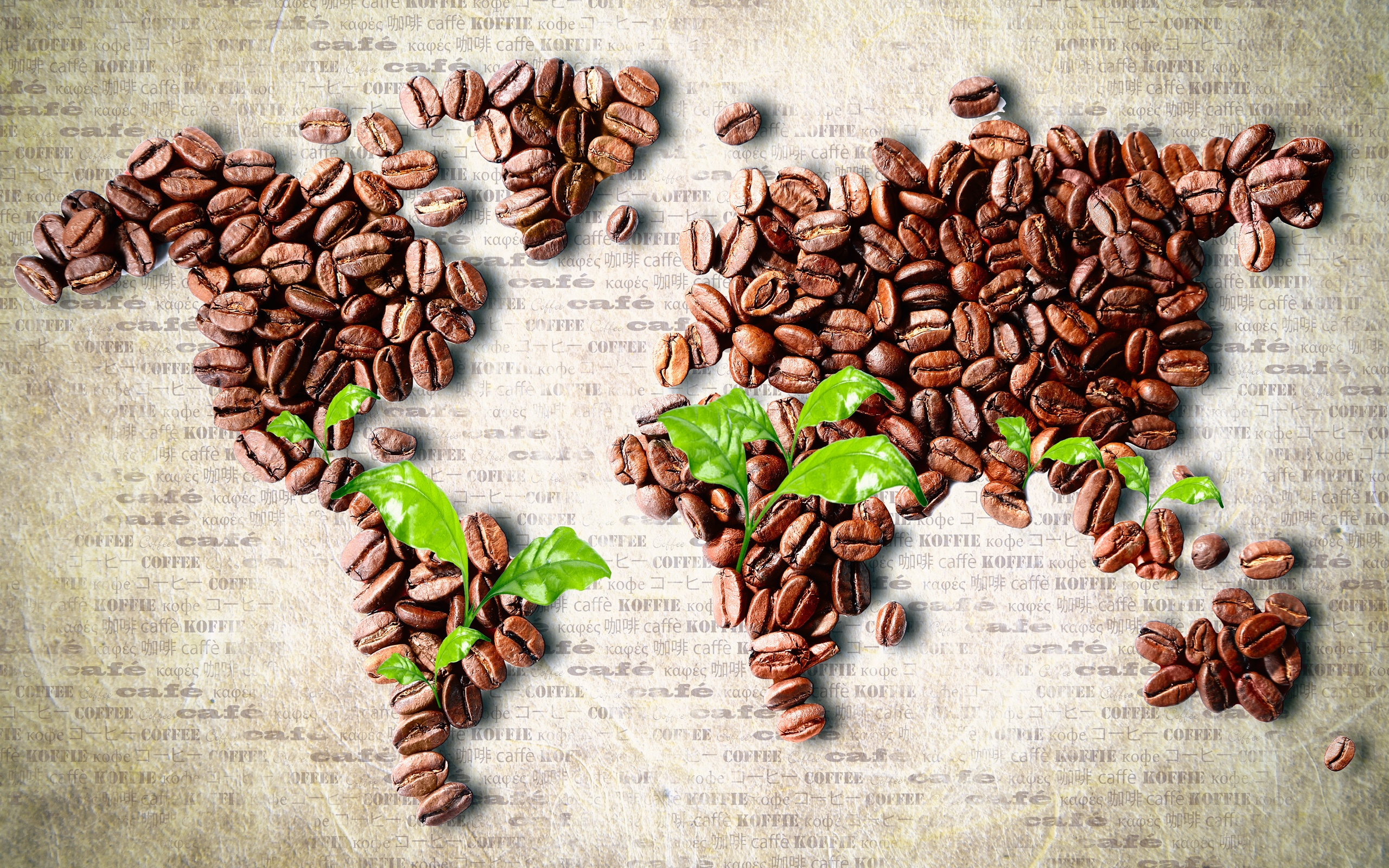 World Map made of Coffee Beans