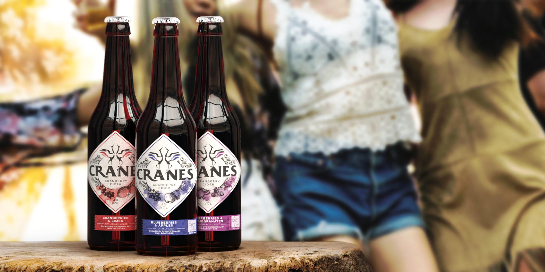 OP Web Cranes 04